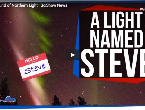 A New Kind of Northern Light