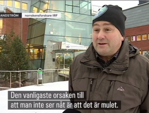 The Northern Lights researcher Urban Brändström in television feature